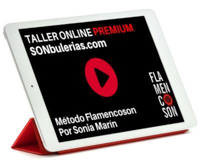 Taller Online Premium: SONbulerias.com