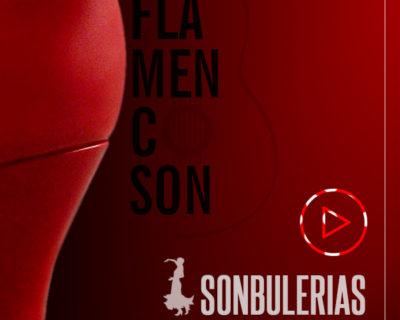 Curso Online: SONbulerias (Bulerías de Jerez paso a paso)