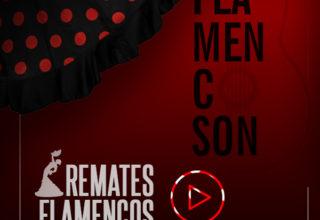Clase Online: Los Remates Finales en las Sevillanas Flamencas (extracto del Curso Online SevillanasFlamencas.com)